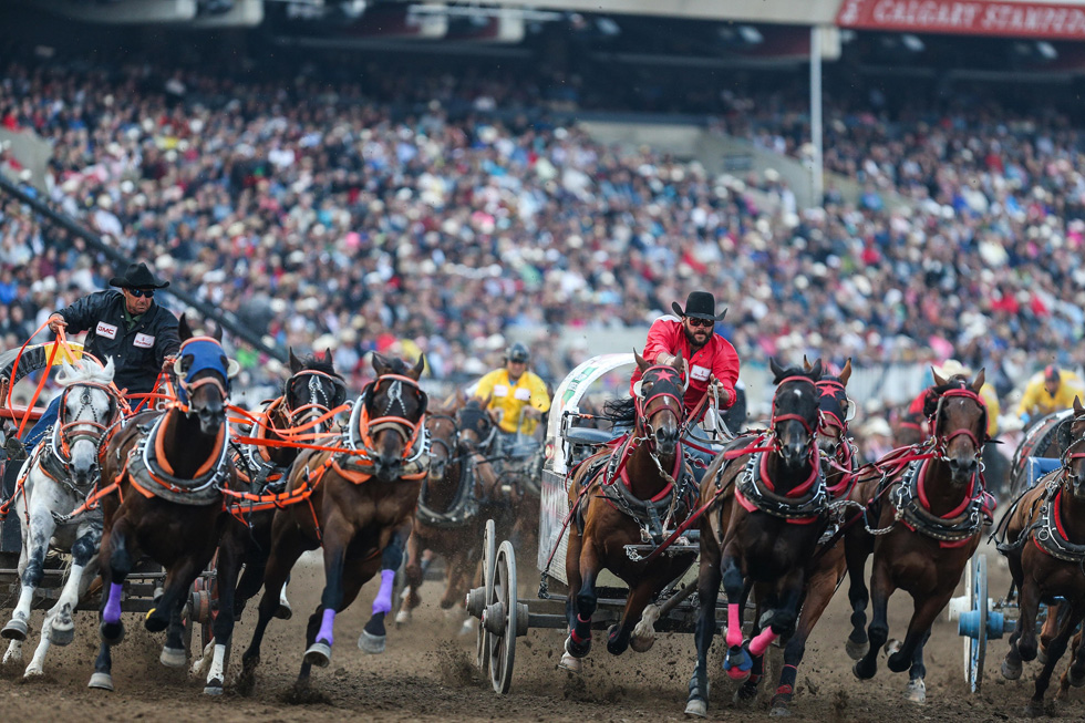 The 106th Calgary Stampede The Greatest Outdoor Show On